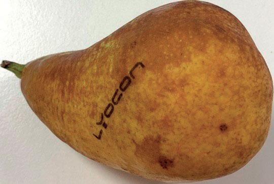 Il natural branding agisce come un tatuaggio laser, soprattutto per la frutta e la verdura biologica, e soddisfa le norme dell'UE.