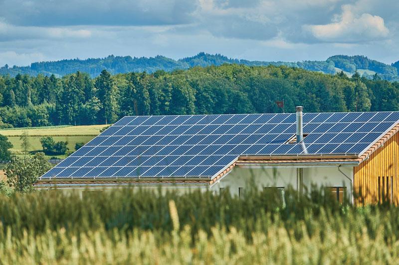 In una fabbrica di pannelli solari, ogni cella viene ispezionata per misurarne le prestazioni.