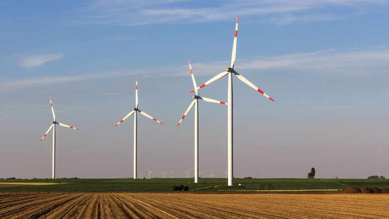 An important sector is energy, which focuses  on green hydrogen  and renewables.