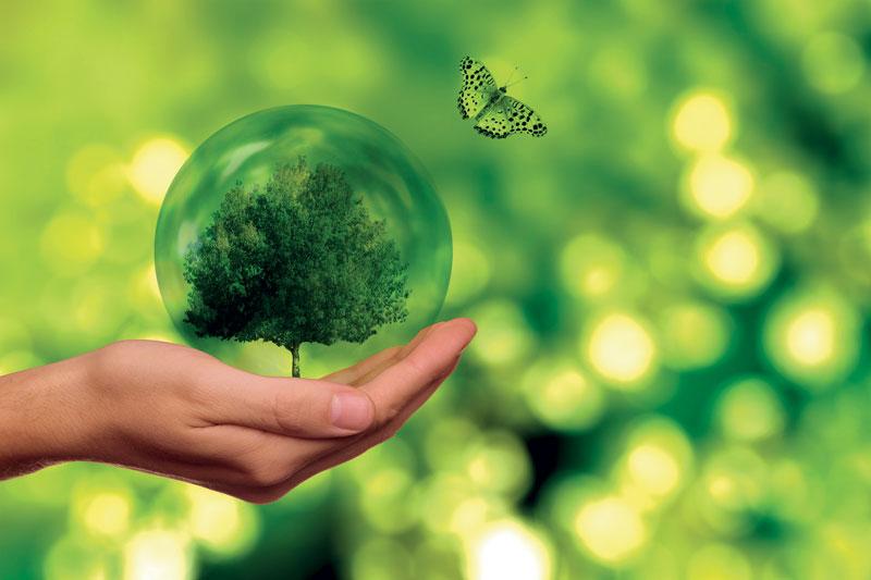 Il 2021 promette di diventare un anno molto impegnativo in termini di nuove leggi e norme in particolare per quanto riguarda i dati e la sostenibilità.