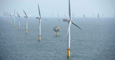 Alta specializzazione nei cuscinetti per turbine eoliche