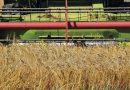 Primo semestre in crescita per il mercato italiano delle macchine agricole