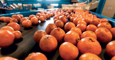 La richiesta di prodotti alimentari è destinata ad aumentare drasticamente nei prossimi decenni.