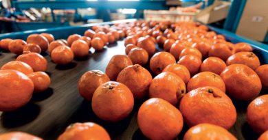 Advanced Food Handling Technology