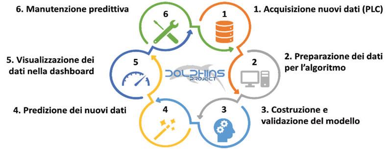 Rappresentazione schematica del workflow del progetto Dolphins.